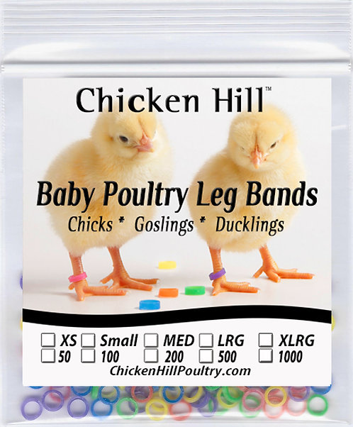 Baby Poultry Leg Band XSmall Size 2 Mixed Color Pack of 100 - Quail