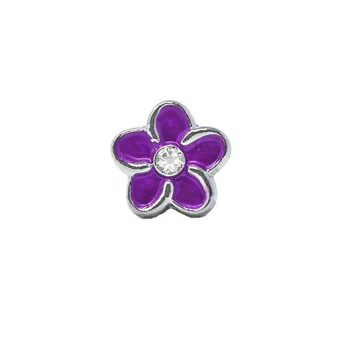 Purple Plumeria