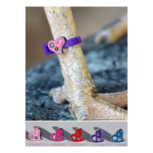 5 Heart Chicken Charm® Poultry Leg Bands