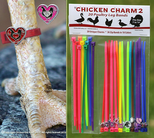 Chicken Charm®  # 2 Poultry Leg Band set of 20