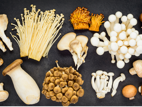A guide to different types of edible mushrooms