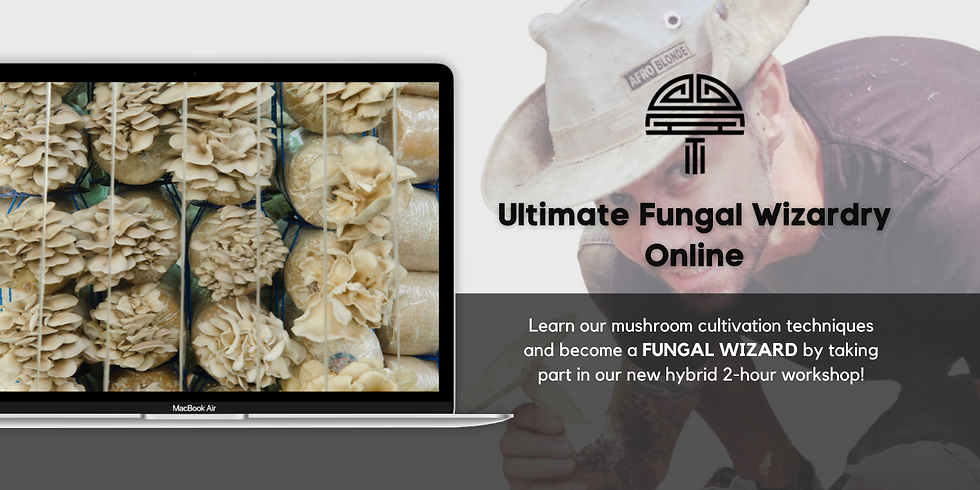 Online Ultimate Fungal Wizardry  September  25th