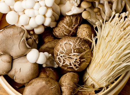 Mushrooms... and their superfood qualities!