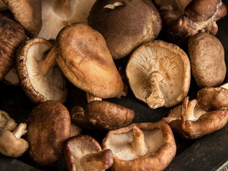 Amazing Health Benefits of Shiitake Mushrooms