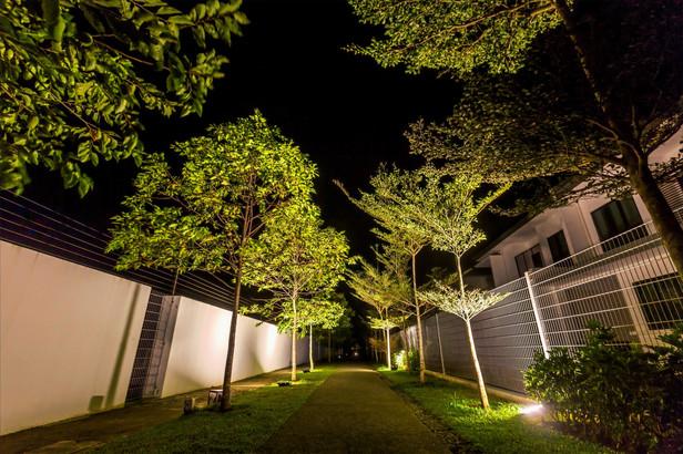 Precinct Premiere Landscape during Night Time