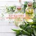 Extractos de Hierbas & Flores - DIY - Oleatos