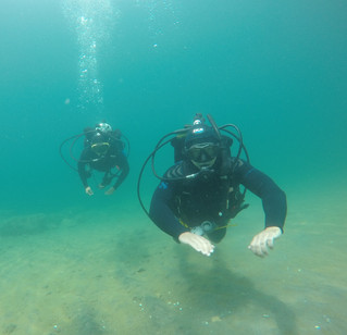 Peak diving conditions, and a whole lot of fun!