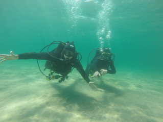 Learning to scuba dive made to look easy         -  Natural Divers