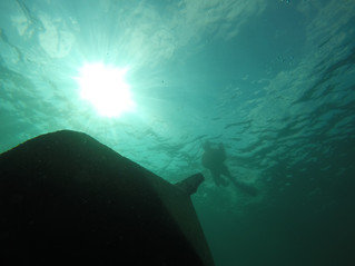 Free diving our local shipwreck - The Mapledawn