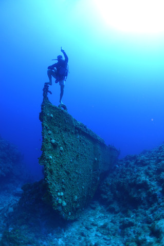 Newly discovered dive site!