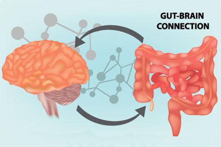 Microbiome et santé mentale : une relation insoupçonnée