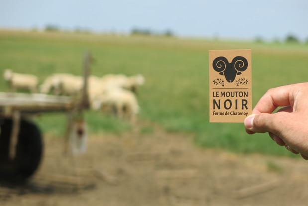 Carte de visite Le Mouton Noir