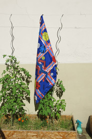 Foulard 3615 TARTAR (bleu et rouge)