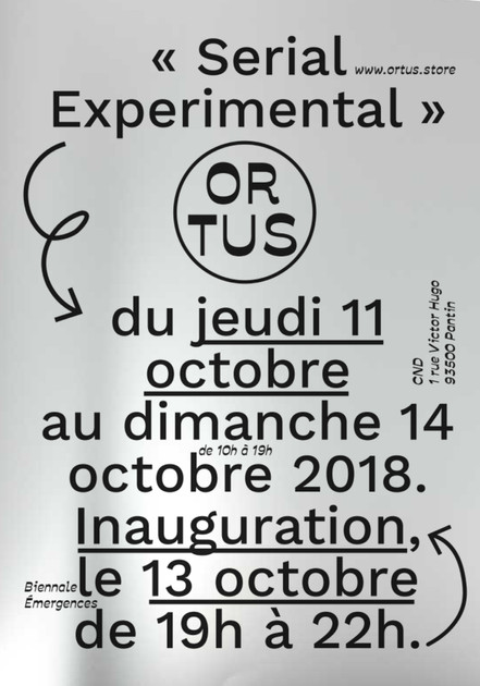 Flyer Ortus - Serial Experimental