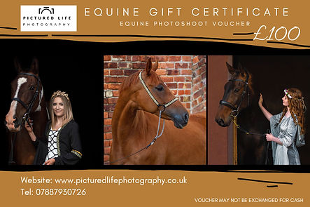 Photography Equine Gift Certificate.jpg