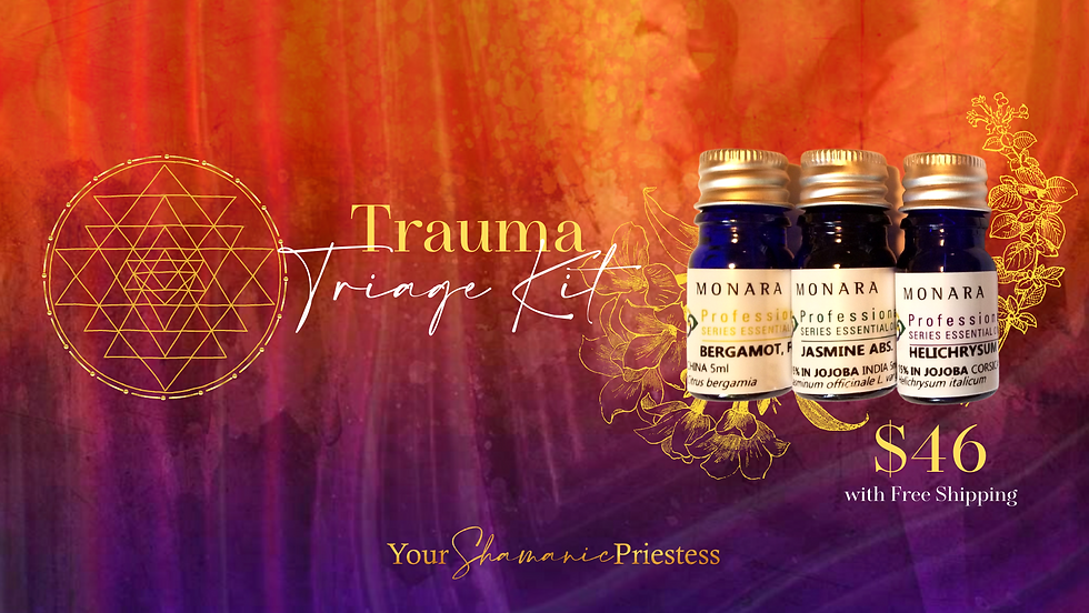Your Shamanic Priestess FB Cover (2).png
