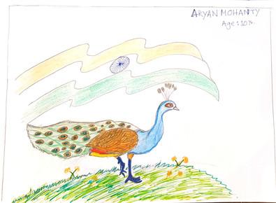 Junior-Aryan-Mohanty-10Yrs-VIC.jpg