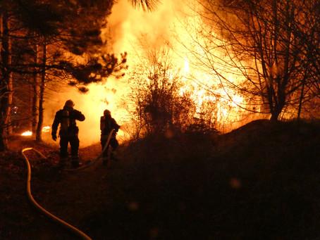 Einsatz 044/2020 - Brand einer Gartenlaube