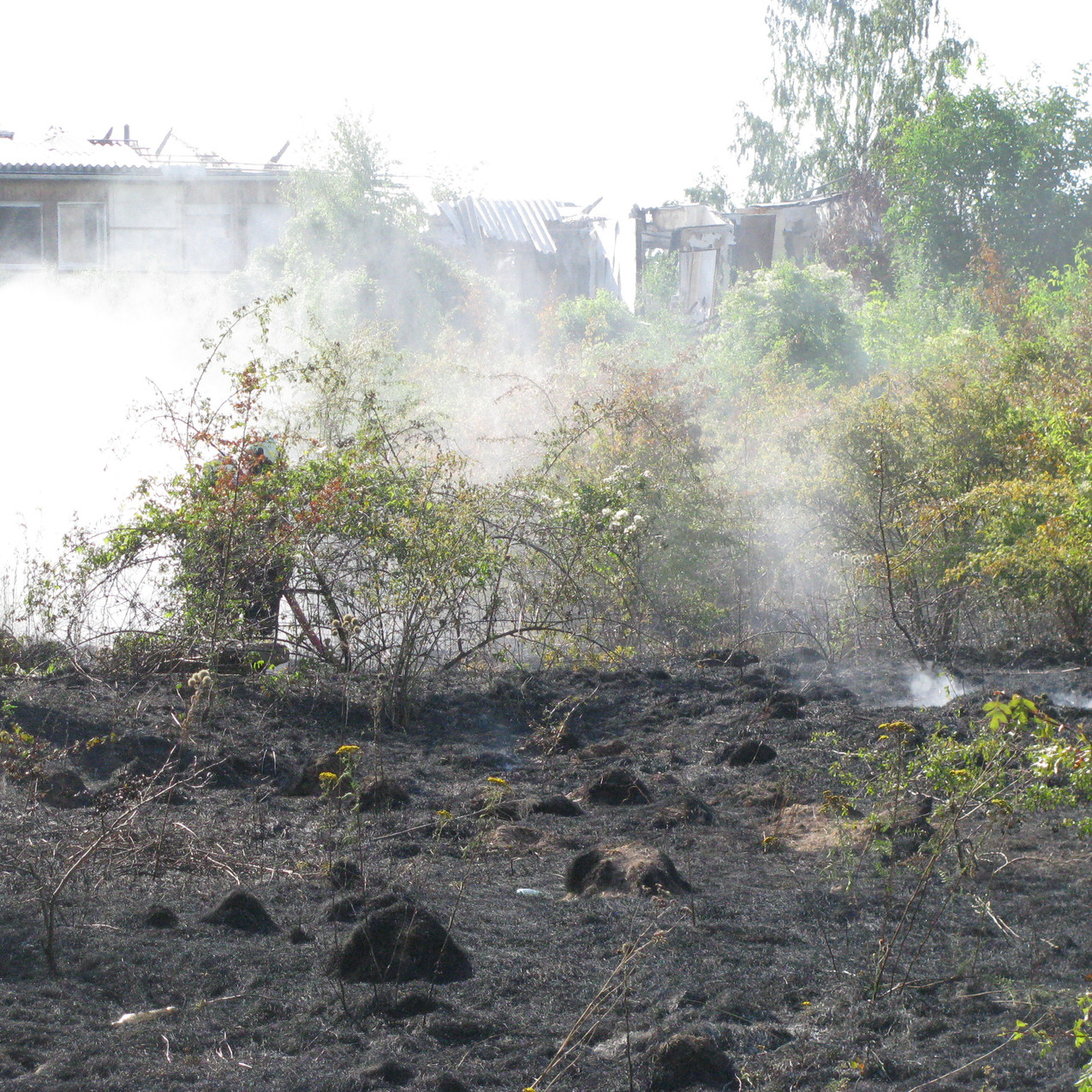 Flächenbrand