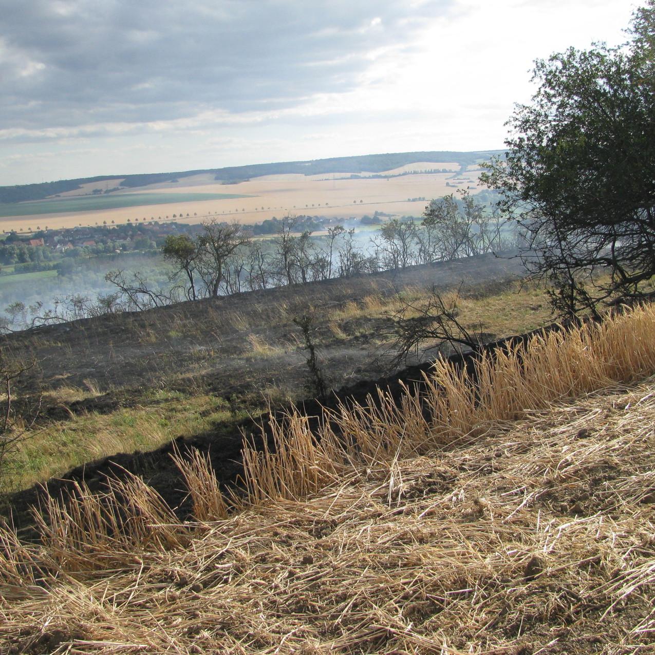 Getreidefeld- und Ödlandbrand