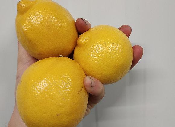 Citron jaune - la pièce