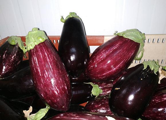 Aubergine noire - lot de 2