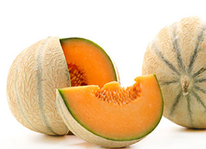 Melon charentais  - lot de 2 FR