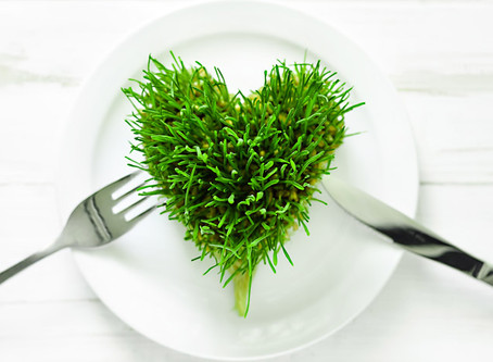 What are the benefits of wheat grass?