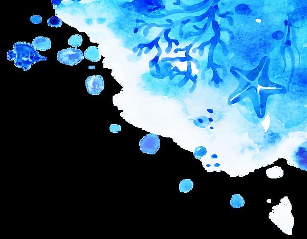 bg-ocean-fish2.png