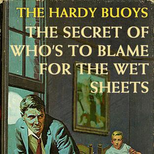 THE HARDY BUOYS