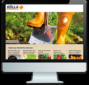 webdesign-neuss-koella-friut-company.png