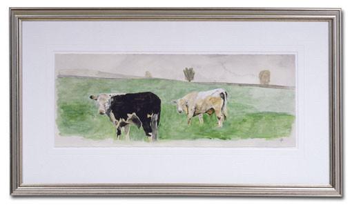 'Irish Bull'
