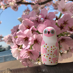 with cherry blossom
