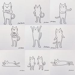 illustration cat