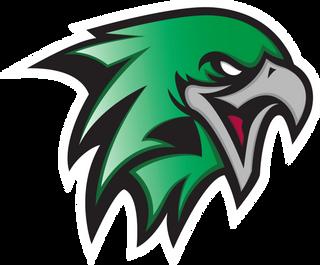 Hawk's Cry Gaming Logo