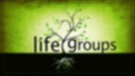 mpa-life-group.jpg