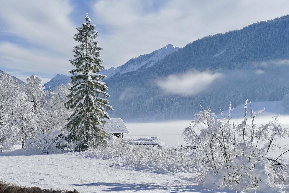 snow-3062520.jpg