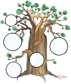 Baobab et bulles