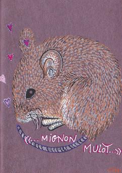 Mignon mulot