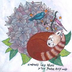 Dans les rêves d'un panda roux