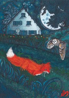 Le Bois joli, la douceur de la nuit, carte postale