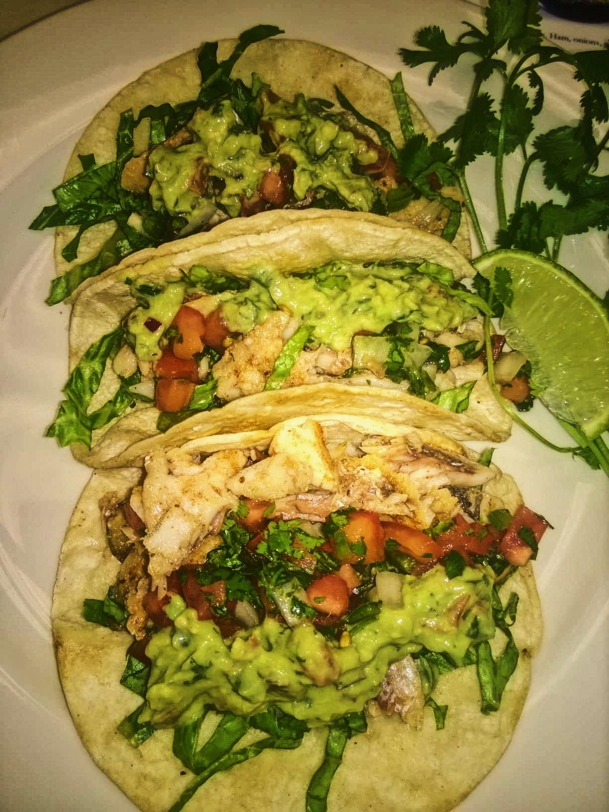 Delicious authentic chicken tacos