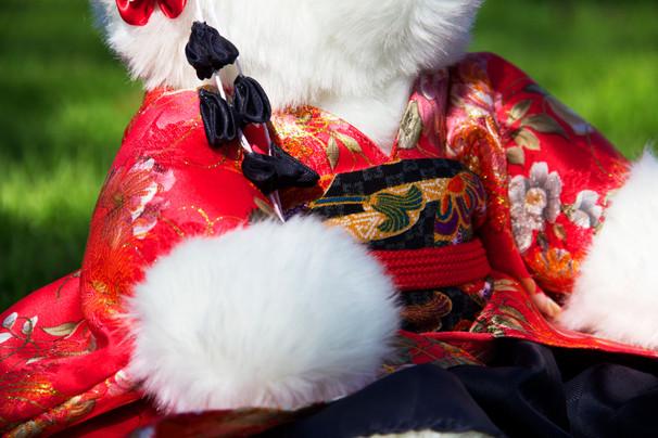 Kimono Zoom In