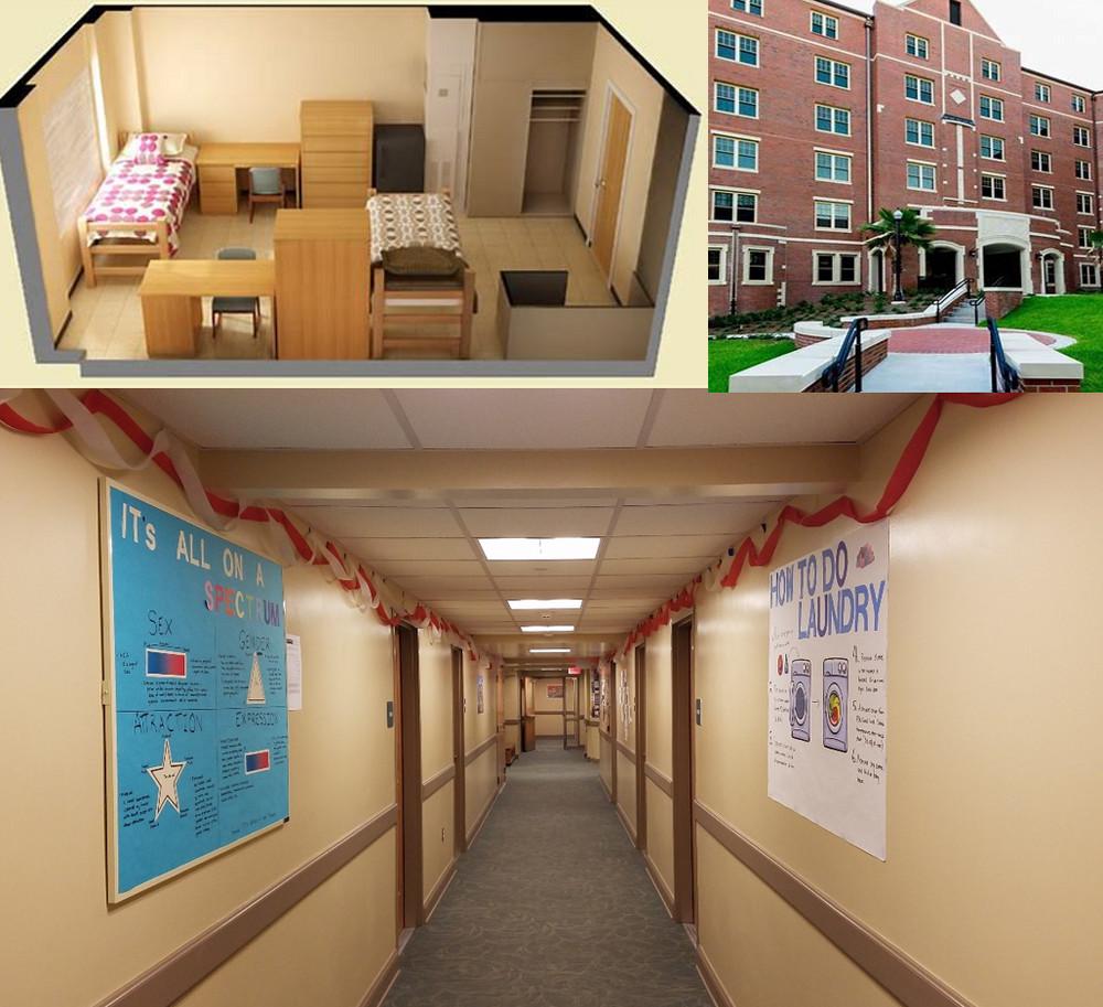 Dorman Hall Blog 2