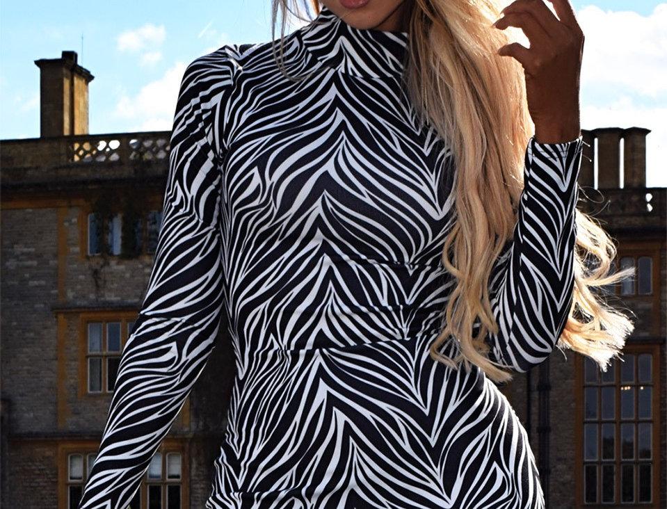 Freya Zebra Print Bodycon Dress