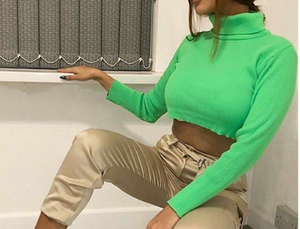 Jodie Neon Polo Crop Top