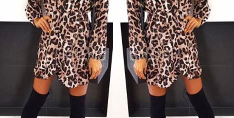 Pamela Leopard Print Shift Dress