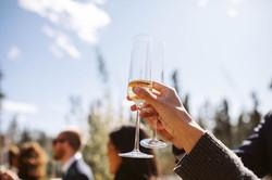 Backyard wedding planner