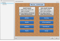 ESOL Count and Non-Count Nouns