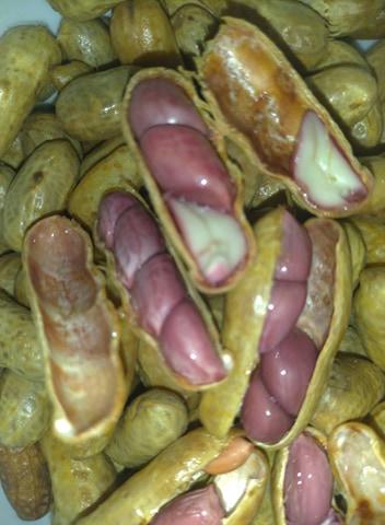Amendoins_Cozidos_do_São_João